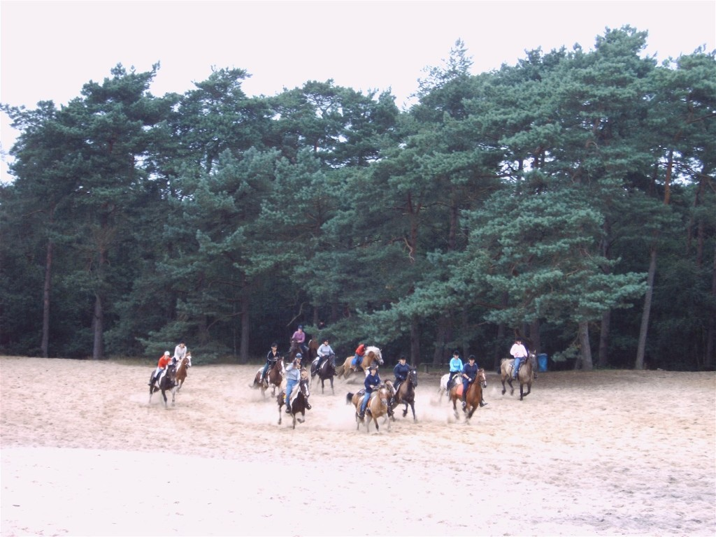 in galop over de zandvlakte